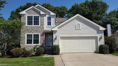 Twinsburg Single Family Home For Sale: 1781 Bellaway Dr