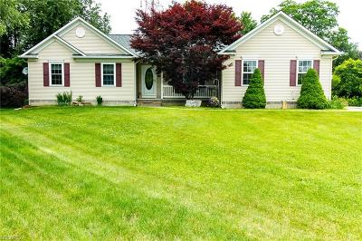 Painesville Township Single Family Home For Sale: 169 Sandstone Dr