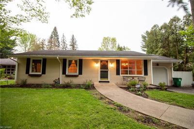 Chagrin Falls Single Family Home For Sale: 8471 Summit Dr