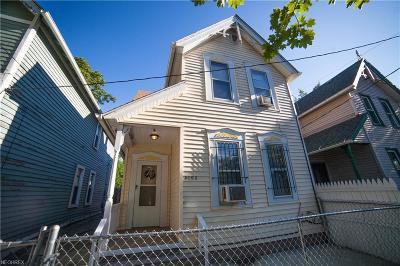 Ohio City Single Family Home For Sale: 5103 Bridge Ave