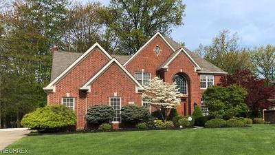 Westlake Single Family Home For Sale: 1468 Stone Ct