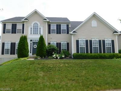 Copley Single Family Home For Sale: 261 Alexander Ct
