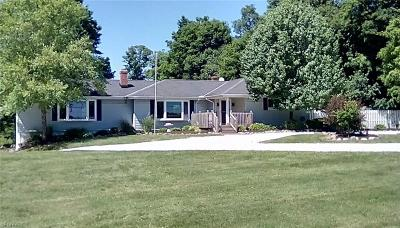 Newbury Single Family Home For Sale: 10568 Bell Rd