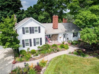 Seville Single Family Home For Sale: 7426 Wooster Pike Rd
