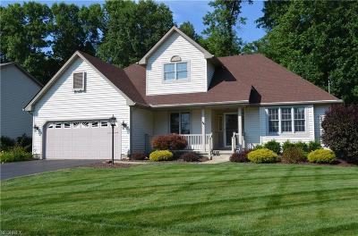 Newton Falls Single Family Home For Sale: 1021 Paige Ct