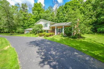 Geauga County Single Family Home For Sale: 8062 Chagrin Rd