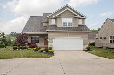 Avon Single Family Home For Sale: 3528 Brook Ct