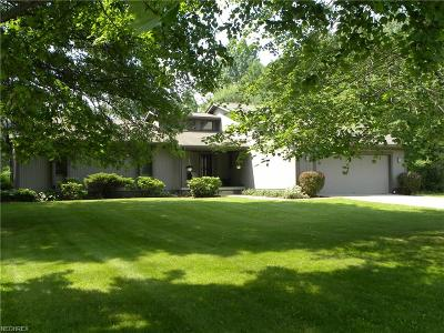 Canfield Single Family Home For Sale: 3239 Paradise Ave