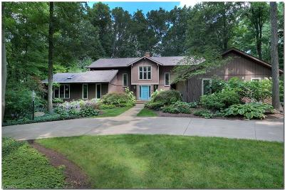 Summit County Single Family Home For Sale: 1105 Aspenwood Rd
