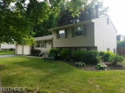 Mineral Ridge Single Family Home For Sale: 1382 Northfield