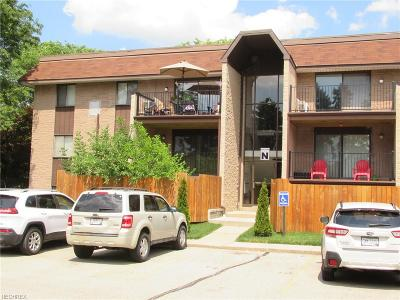 Painesville Township Condo/Townhouse For Sale: 9956 Johnnycake Ridge Rd #N4