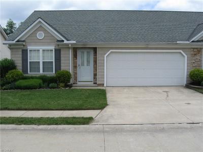 Painesville Condo/Townhouse For Sale: 720 Rivers Edge Ln