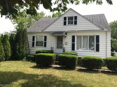 Euclid Single Family Home For Sale: 20860 North Vine Ave
