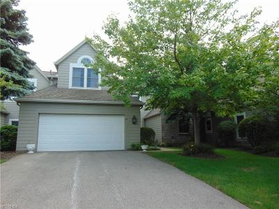 Bratenahl Single Family Home For Sale: 48 Haskell Dr