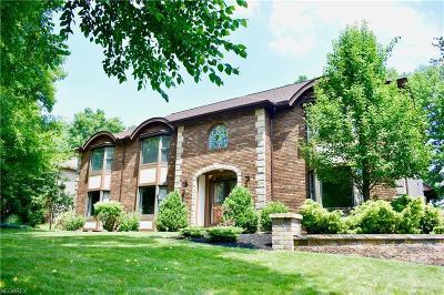 North Royalton Single Family Home For Sale: 13801 Monica Dr