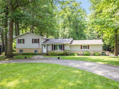 Brunswick Single Family Home For Sale: 3896 Miller Dr
