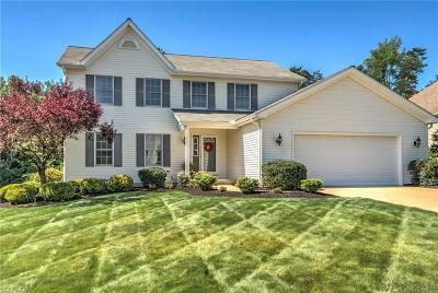 Summit County Single Family Home For Sale: 733 Ravenhill Rd