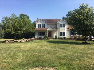 Summit County Single Family Home For Sale: 2278 Jesse Dr