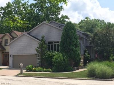 Chagrin Falls Single Family Home For Sale: 50 Riverview Ct