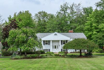 Mentor Single Family Home For Sale: 10271 Page Dr