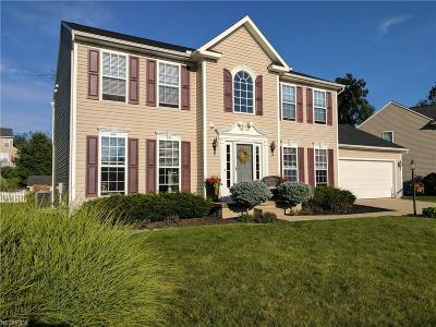 Copley Single Family Home For Sale: 247 Misty Ln