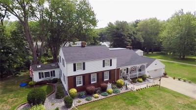 Ashtabula County Single Family Home For Sale: 6420 Amelia Ave
