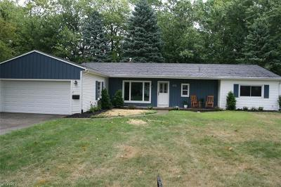 Avon Lake Single Family Home For Sale: 135 Curtis Dr