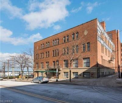 Cleveland OH Condo/Townhouse For Sale: $210,000