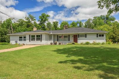 Newbury Single Family Home For Sale: 14485 Bass Lake Rd
