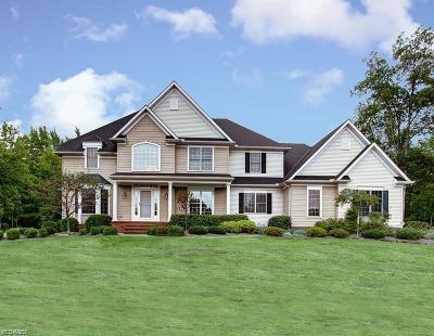 Kirtland Single Family Home For Sale: 9819 Foxwood Trl