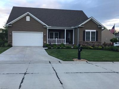Mentor, Mentor-on-the-lake Single Family Home For Sale: 8692 Blue Heron Way
