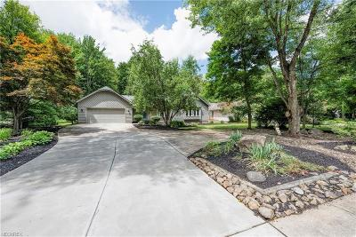 Solon Single Family Home For Sale: 33005 Cannon Rd