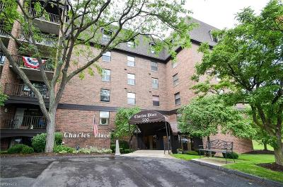 Westlake Condo/Townhouse For Sale: 700 Brick Mill Run #604