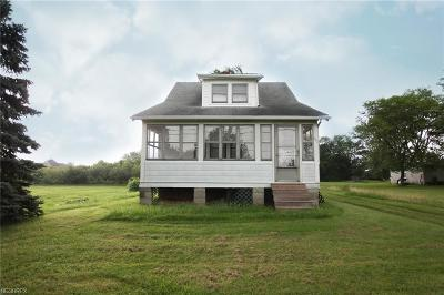Brunswick Single Family Home For Sale: 387 Marks Rd