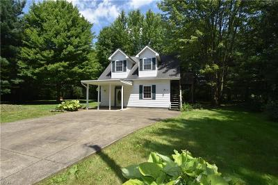 Newton Falls Single Family Home For Sale: 746 North Jewell Rd