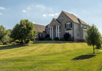 Summit County Single Family Home For Sale: 1979 Rock Creek South