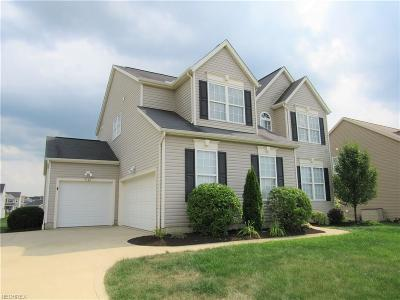 Medina Single Family Home For Sale: 5584 Frith Ct