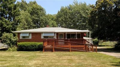 Strongsville Single Family Home For Sale: 13195 Richards Dr