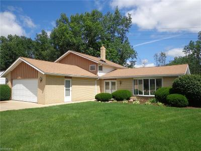 Strongsville Single Family Home For Sale: 22226 Lorraine Dr