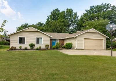 Strongsville Single Family Home For Sale: 19737 Westwood Dr