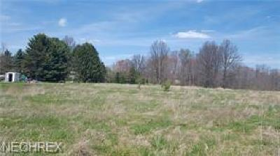Residential Lots & Land For Sale: 9999 Newton Falls Bailey Road