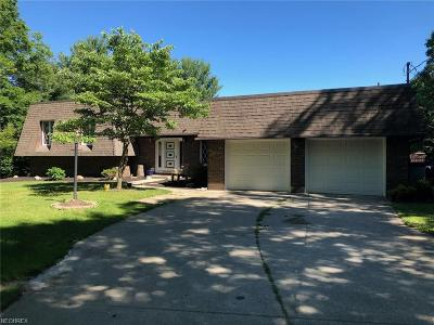 Madison Single Family Home For Sale: 6077 Ford Rd