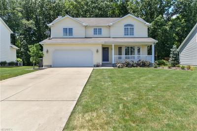 Austintown Single Family Home For Sale: 1268 Victory Hill Ln