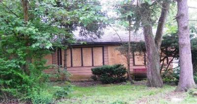 Aurora Single Family Home For Sale: 1005 East Blvd