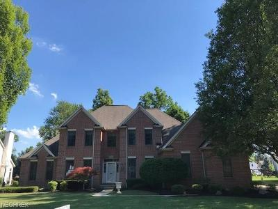 Westlake Single Family Home For Sale: 24471 Hedgewood Way
