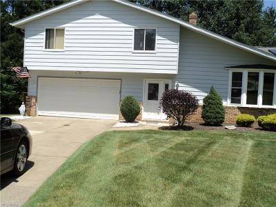 Solon Single Family Home For Sale: 5876 North Oval