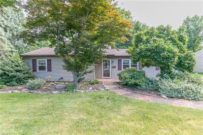 North Ridgeville Single Family Home For Sale: 26 Cadet Dr