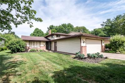 Solon Single Family Home For Sale: 6569 Brookland Ave