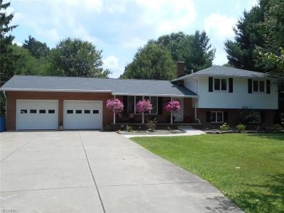 Lordstown Single Family Home For Sale: 7021 Highland Ave Southwest