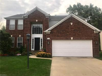 Brecksville, Broadview Heights Single Family Home For Sale: 362 Windham Ct